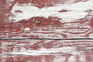 Wood Background 62