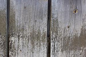 Wood Background 8
