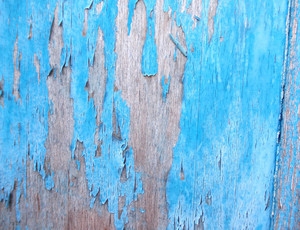 Wood Background Texture 28