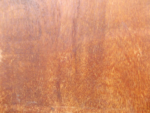 Wood Background Texture 37