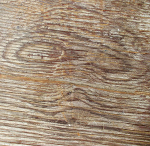 Wood Background Texture 41