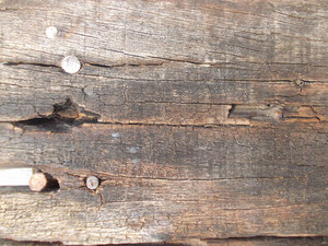 Wood Background Texture 44