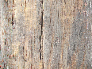 Wood Background Texture 46
