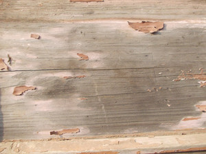 Wood Background Texture 50