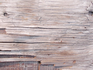 Wood Background Texture 57