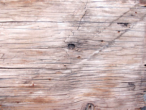 Wood Background Texture 58