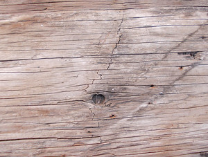 Wood Background Texture 61