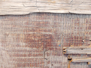 Wood Background Texture 63