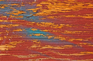 Wood Bark Texture 2