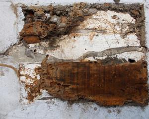 Wood Bark Texture 55