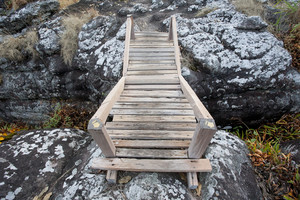 wood bridge on rock