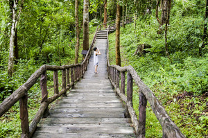Wood bridge to jungle, Chiang Mai, Thailand