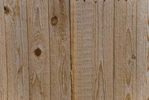 Wood Grain 11 Texture