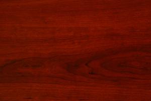 Wood Grain 12 Texture