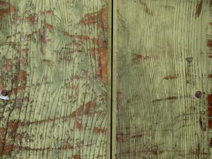 Wood Grain 16 Texture