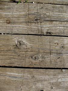 Wood Grain 18 Texture