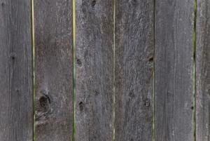 Wood Grain 2 Texture