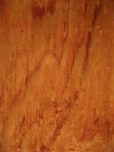 Wood Grain 21 Texture