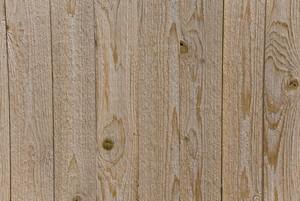 Wood Grain 24 Texture