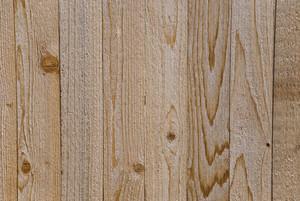 Wood Grain 26 Texture