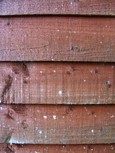Wood Grain 4 Texture