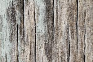 Wood Grain 43 Texture