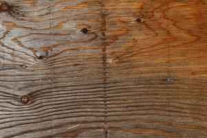 Wood Grain 44 Texture