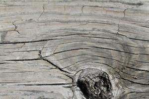 Wood Grain 46 Texture