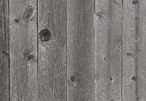 Wood Grain 5 Texture