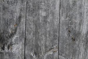 Wood Grain 54 Texture