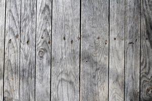 Wood Grain 55 Texture