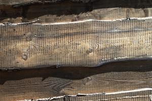 Wood Grain 63 Texture