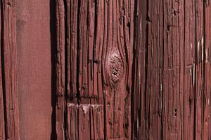 Wood Grain 65 Texture
