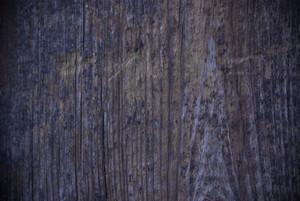 Wood Grain 67 Texture