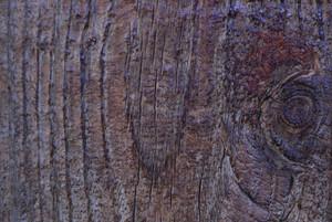 Wood Grain 69 Texture