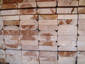 Wood Grain 79 Texture