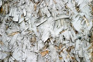 Wood Grain 81 Texture