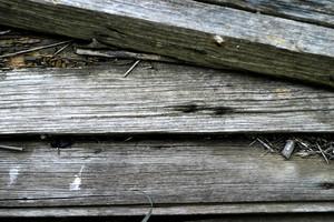 Wood Grain 82 Texture