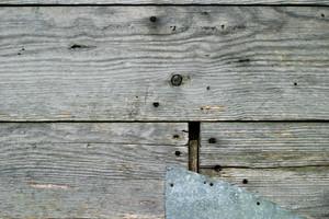 Wood Grain 84 Texture