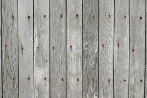 Wood Grain 87 Texture
