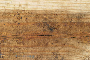 Wood Grain 90 Texture