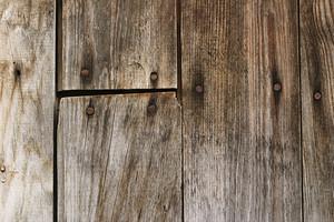 Wood Grain 92 Texture