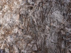 Wood Grain 95 Texture