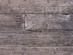 Wood Grain 96 Texture