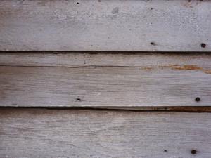 Wood Grain 98 Texture