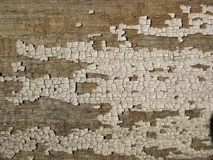 Wood Grunge 18 Texture