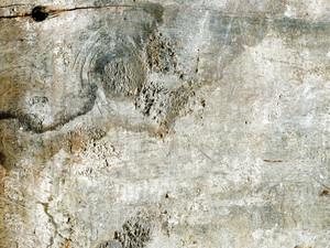 Wood Grunge 2 Texture