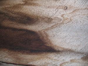 Wood Grunge 24 Texture