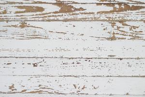 Wood Grunge 31 Texture