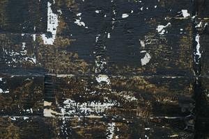 Wood Grunge 33 Texture